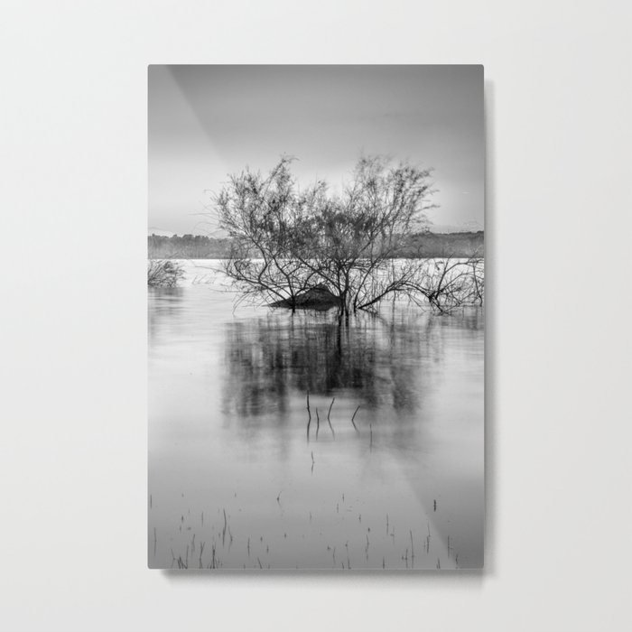 """Peace at the lake"". Dream sunset. Monochrome Metal Print"