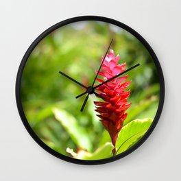 Hawaiian Red Ginger Wall Clock