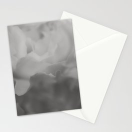 Petals in Abundance - Abstract Floral Photography Stationery Cards