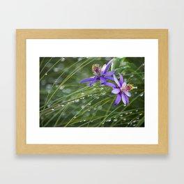 Meadow Dew Framed Art Print