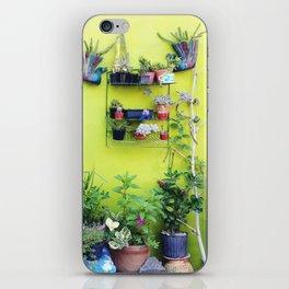 Mexican Yard iPhone Skin