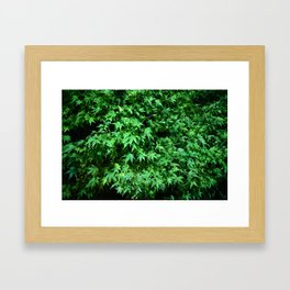 Military support Glow Japanese Maple Framed Art Print