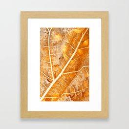 Burning Bokeh Leaf Framed Art Print