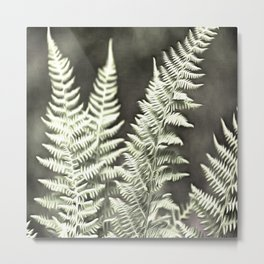 Fantasy Feather Like Fern Metal Print