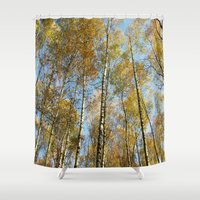 birch Shower Curtains featuring Birch forest by Tanja Riedel