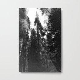 Tahoe Fading Metal Print