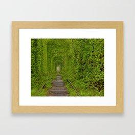 Inside The Tunnel Of Love Framed Art Print
