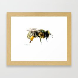 Bee, bee design honey bee, honey making Framed Art Print