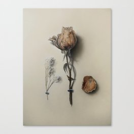 Dried Rose Canvas Print