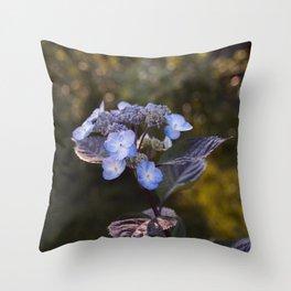 Hydrangea at sunset Throw Pillow