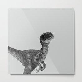 Dino Collection 3 of 4 Metal Print