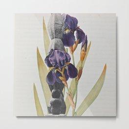 Brancusi Botanical  Metal Print