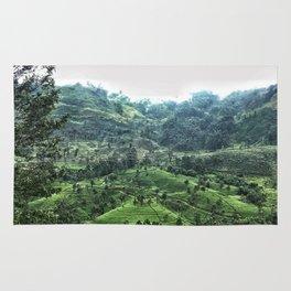 Tea fields of Ella Rug