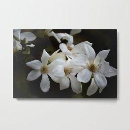 White Asian Beauty Metal Print