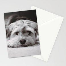 Lazy Dog Days Stationery Cards