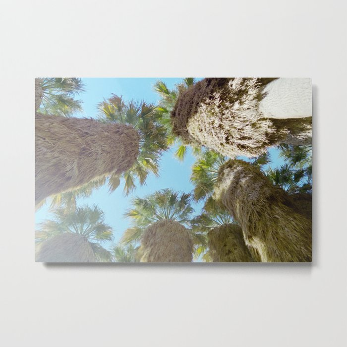 all natural palm trees Metal Print