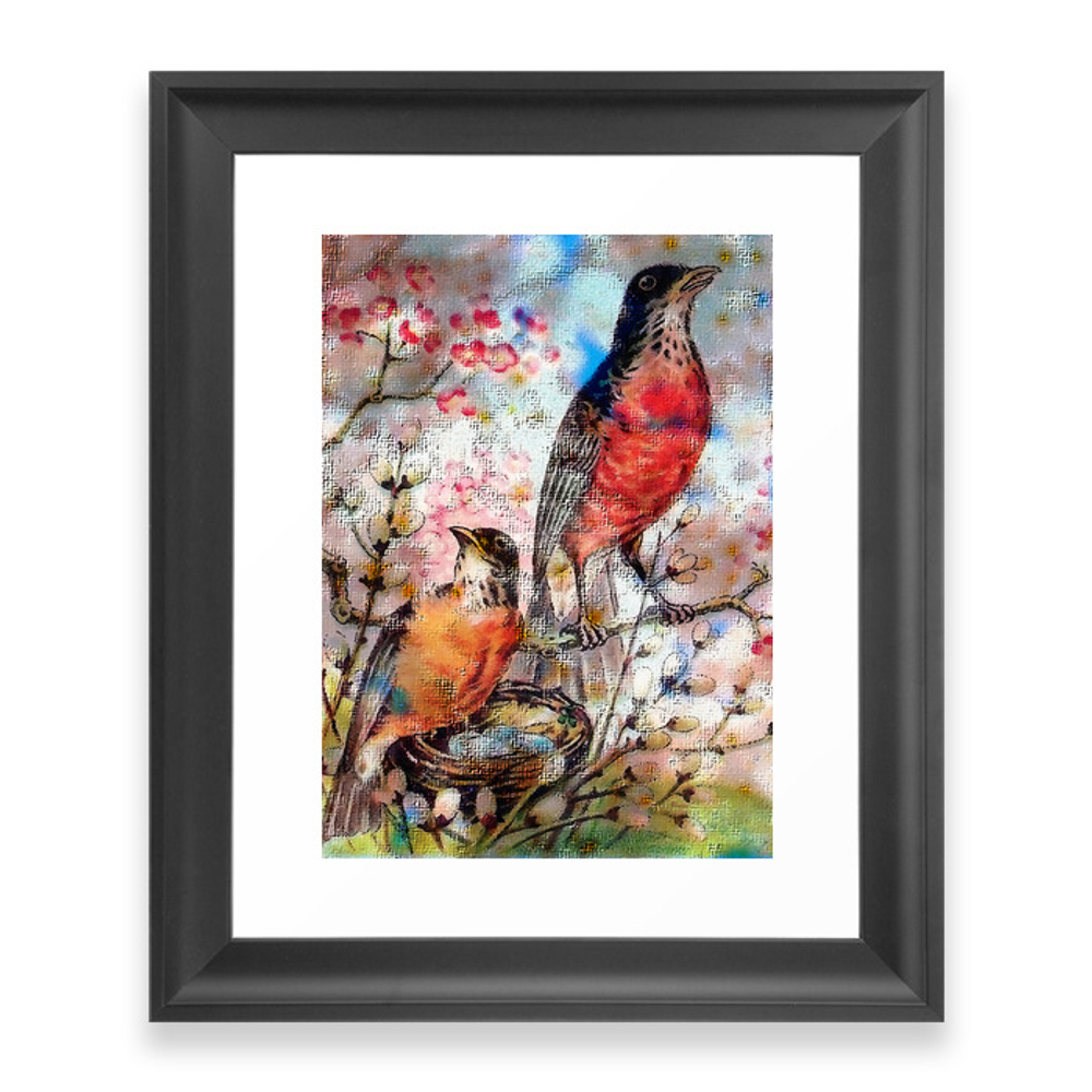 A Robin Redbreast Morning Framed Art Print by tammera (FRM9496762) photo