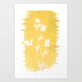 Herbal Sunprint #6 Art Print