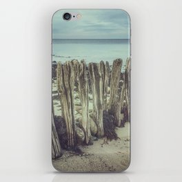 Walrus teeth still standing iPhone Skin