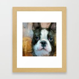 I Adore You Boston Terrier Art Framed Art Print