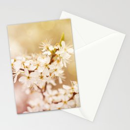 Blooming Cerasus cherry tree Stationery Cards