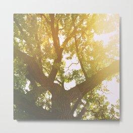 Speak For The Trees Metal Print