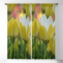 May Flowers For Mom Blackout Curtain