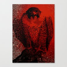 falcon 3 Canvas Print