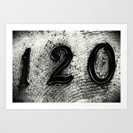 120 Numbers Art Print