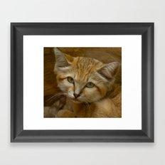 SAND CAT Framed Art Print