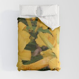 Yellow Day Lily 3 Comforters
