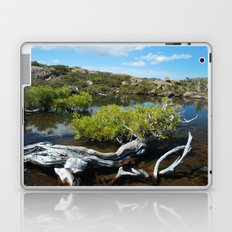 Alpine Moore Laptop & iPad Skin