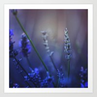 lavender Art Prints featuring Lavender by Nikita Gill