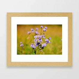 """Violette"" by ICA PAVON Framed Art Print"