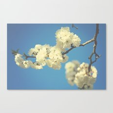 Perfect Canvas Print