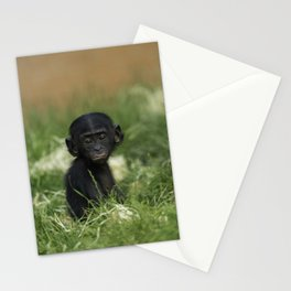 Baby Bonobo Stationery Cards