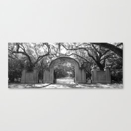 Entry to the Historic Wormsloe Plantation Site Canvas Print