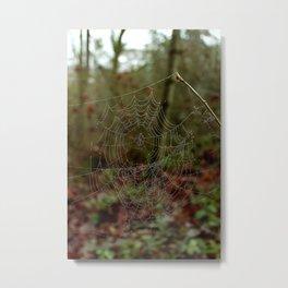 Web and Dew Metal Print