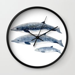 Blainville´s beaked whale Wall Clock