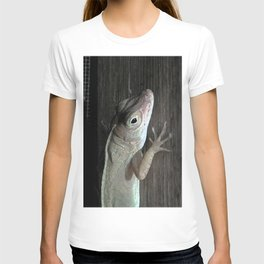 Watercolor People in Nature, AaP, Construction 08, and Lizard, St John, USVI T-shirt