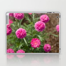 Reine Marguerite #1 Laptop & iPad Skin