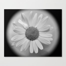 Flower No.4 Canvas Print
