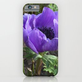Purpler Flower iPhone Case