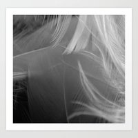 Black and White Feather Gradient  Art Print