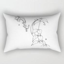Aeschynanthus philippinensis by Jayson Mansibang Rectangular Pillow