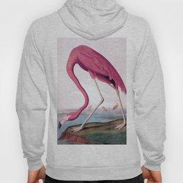 Flamingo - John James Audubon, (1827–38) Hoody