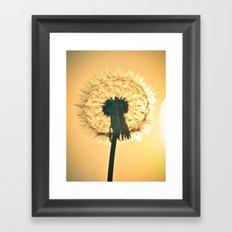 Sunburst Framed Art Print