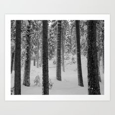 Forest in the Snow Art Print