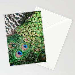 Pavo cristatus feathers Stationery Cards