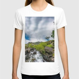 Cwm Idwal Rapids Snowdonia T-shirt